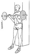 exercice pour travailler les pectoraux